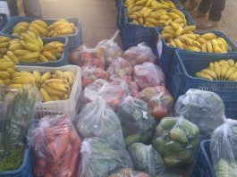 Agricultura familiar nas escolas